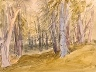 Study of Trees on Box Hill, Surrey -