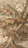 `Depiction of a mature oak tree, with foliage to lower branches and signs of a lightening strike to the upper branches' -
