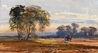 Landscape with Trees -